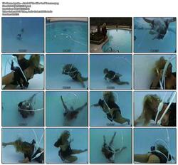 http://img131.imagevenue.com/loc462/th_557933353_Aquafan_AttackOfTheKillerPoolVacuum.mpeg_123_462lo.jpg